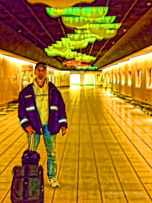 David Alaska Terminal