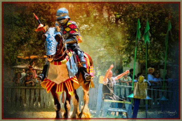 4265-TH-0528A Knight's Prowess
