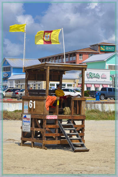 Lifeguards Rule 4332-TH-1299