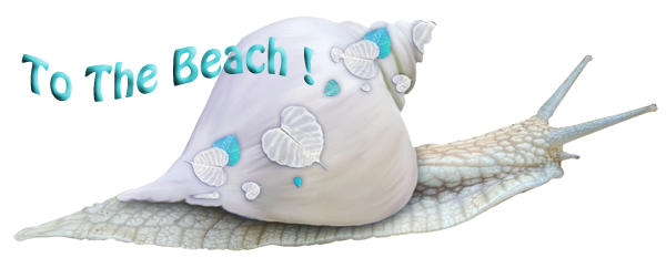 To The Beach Snail LOGO600xPS
