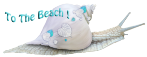 To The Beach Snail LOGO600xPS